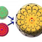 Polermaskine – En guide til Polermaskiner